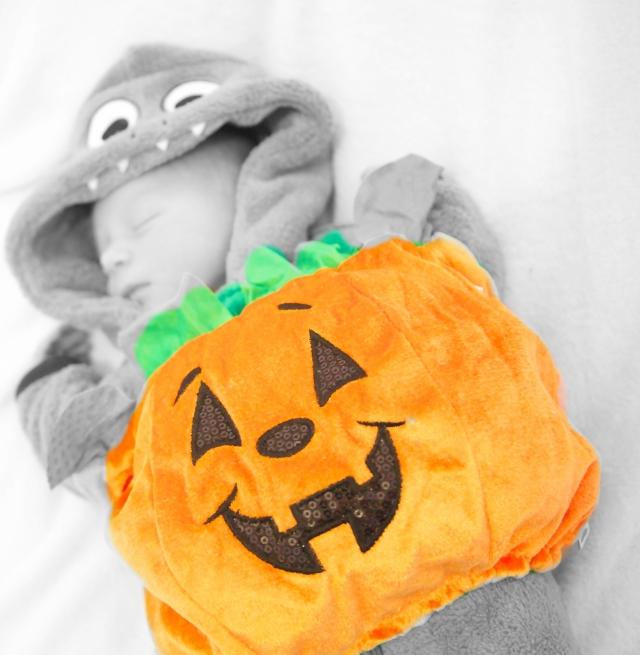 Jude - Pumpkin